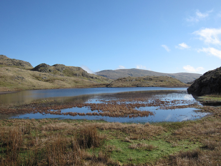 Tarn at Leaves with High Raise behind
