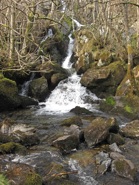 One of the many falls in Measand Beck