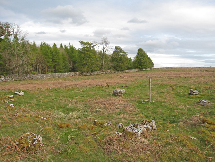 The Stone Circle on Knipescar Common, the post helps you find it