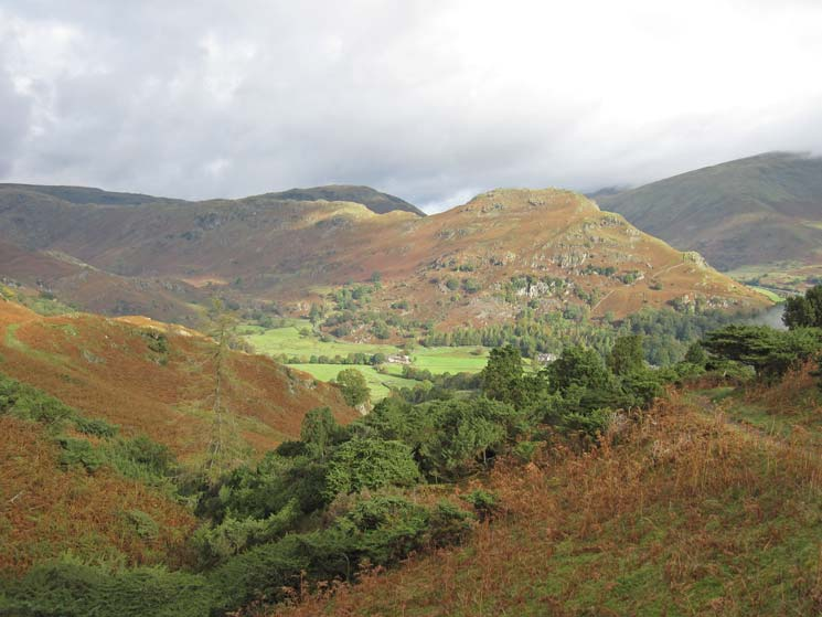 Easedale and Helm Crag from the juniper