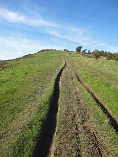 The track up Latrigg