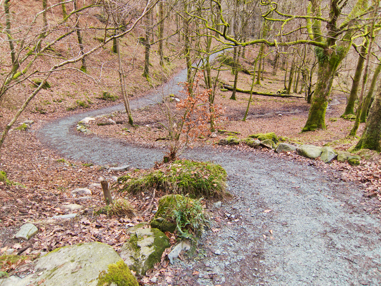 The 'enhanced' path in White Moss Wood, tarmac to follow?