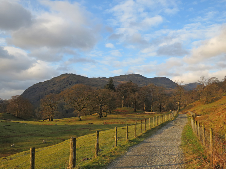 Nab Scar, Heron Pike, Erne Crag top and Great Rigg from Rydal Park