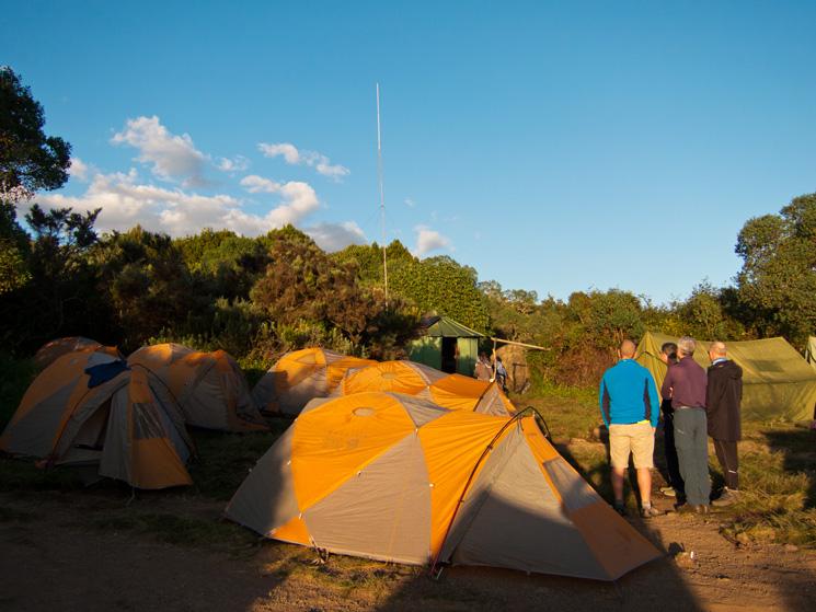 Just after dawn, Simba Camp