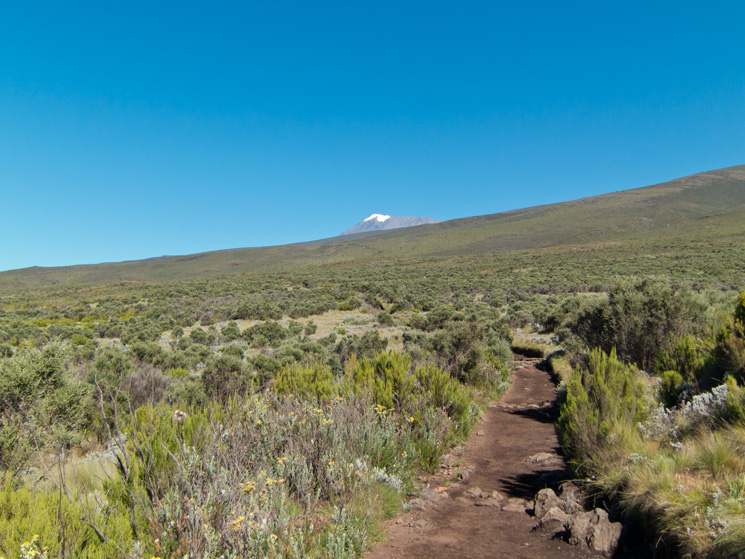 Looking back to Kibo