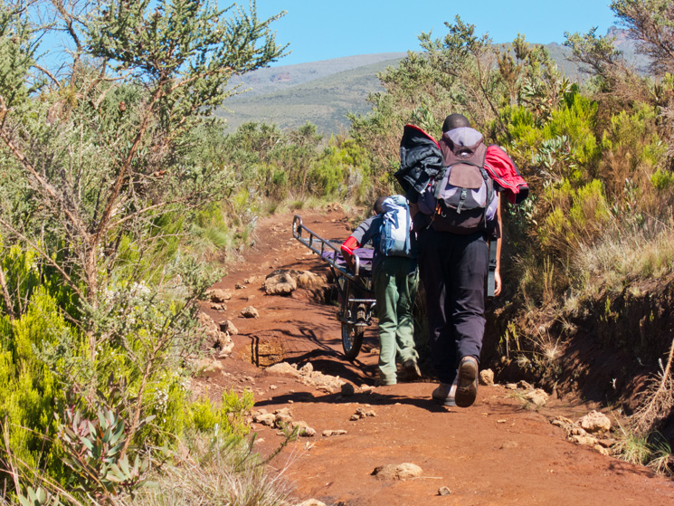 Kilimanjaro Express, a stretcher supported by a single pneumatic wheel, used to ?run? trekkers suffering from altitude sickness down the mountain