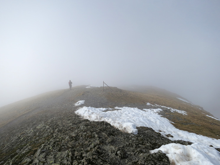 Leaving Grisedale Pike's summit