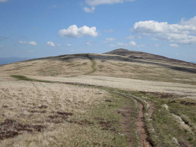 Miton Hill with Carrock Fell behind. We turned left before Miton Hill