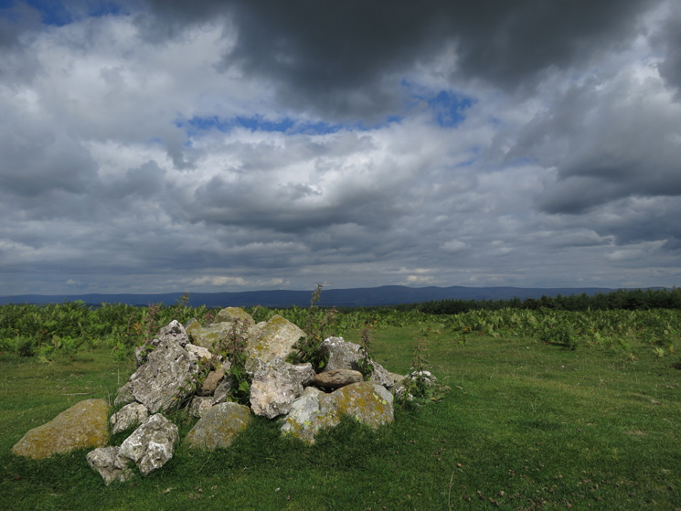 The cairn on the highest point of Heughscar Hill, the north Pennines in the distance