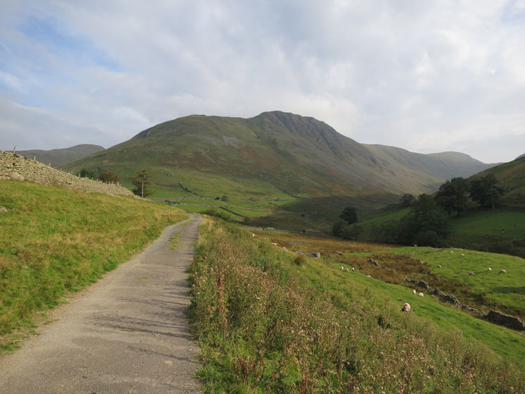 Looking back to Gray Crag