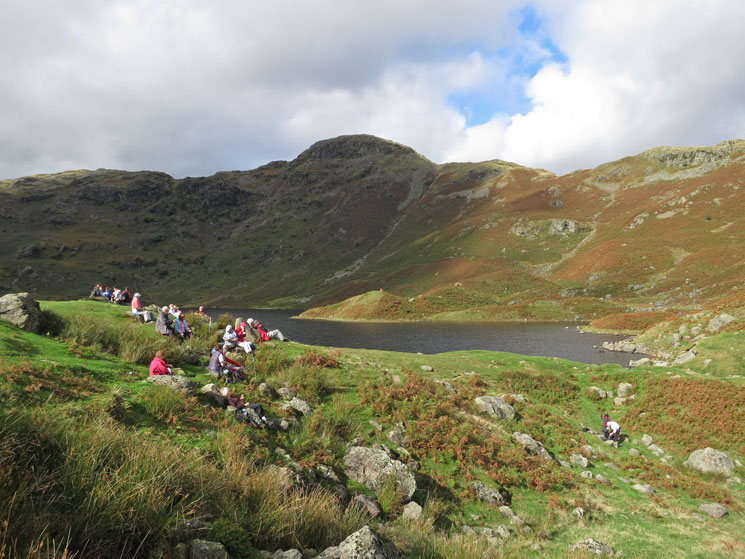 Easedale Tarn, we are not alone